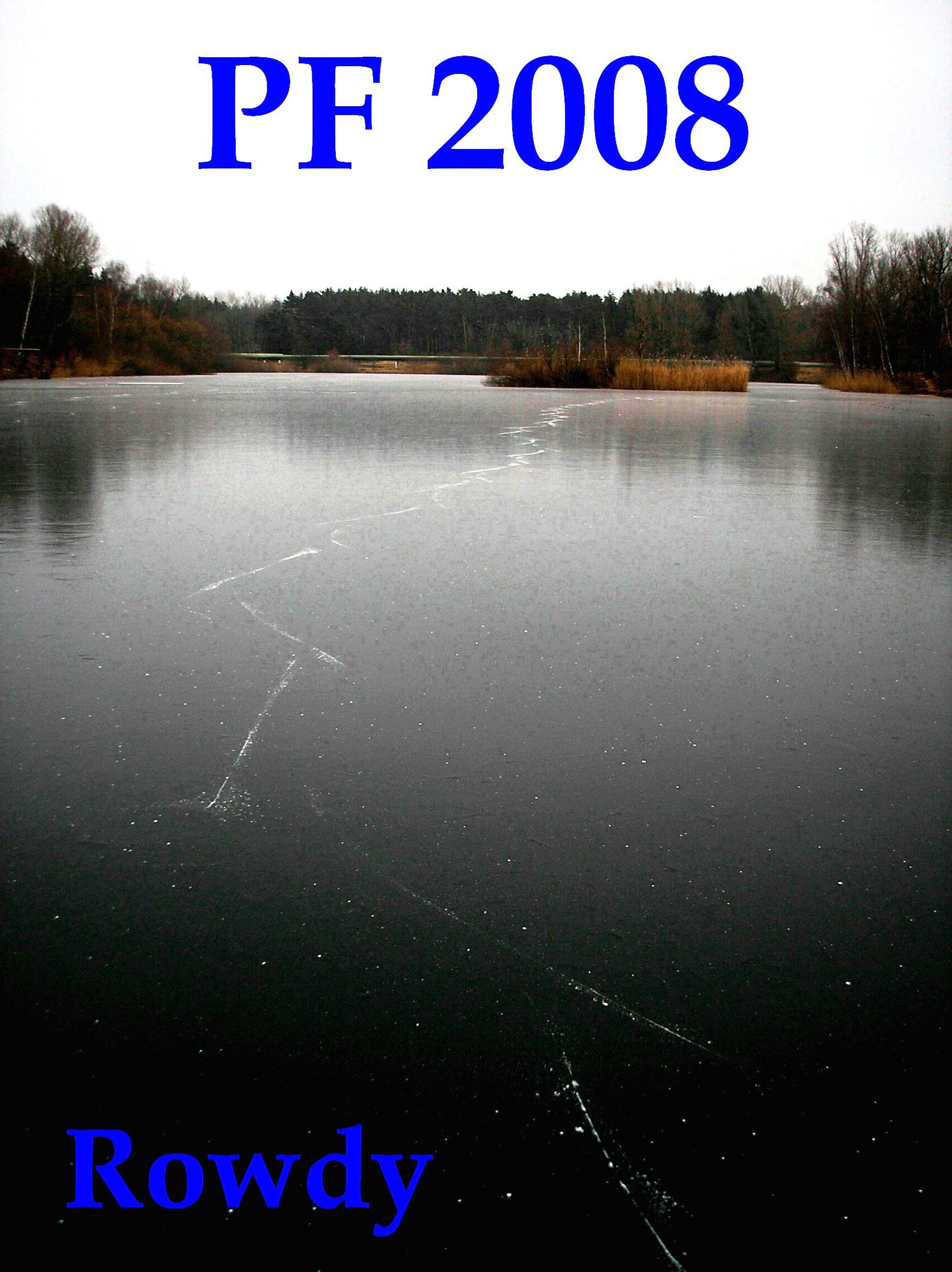 pf2008r.jpg